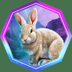 Exclusive Bunny