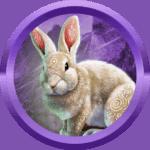 zdravo98 avatar