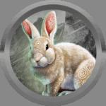 yeulamroi avatar