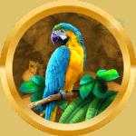 Pookkyki55 avatar