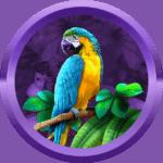 king9669 avatar