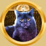 Udahpernah avatar