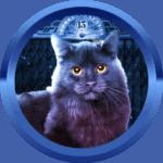 Hoki1994 avatar