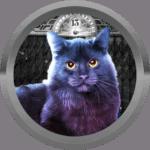 Kuykuy01 avatar